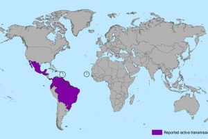 Countries and territories with active Zika virus transmission (from the CDC)